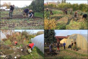 Gartenaktion-Bild